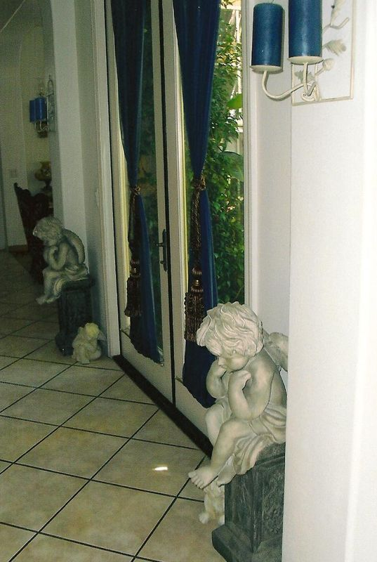 Atrium door